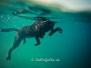Wassersport-Zim, August/September 2013