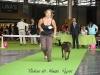11_07_14_worlddogshow58