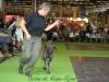 11_07_14_worlddogshow64