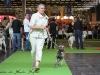 11_07_14_worlddogshow89